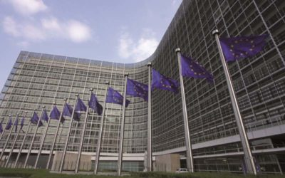 Information from Brussels on Article 74 DelVO