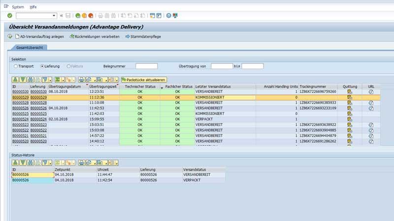 SAP Plug-In Versand 1